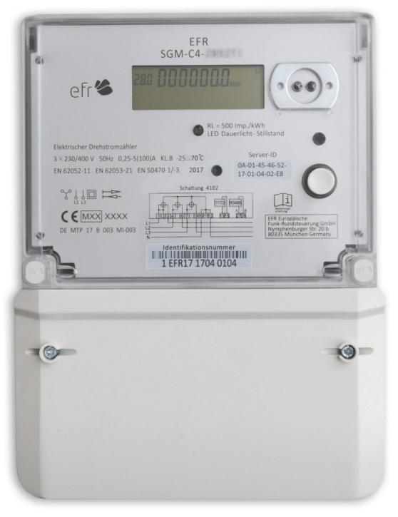 EFR SGM-C4-1A600I-M19
